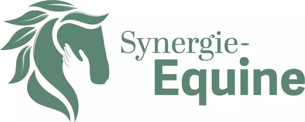 Synergie-Equine